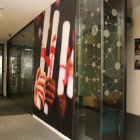 Fototapeta s motivem papírových ruliček v rukou na zdi, polep sklené stěny s motivem souhvězdí
