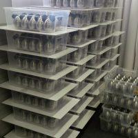Transparentní plastové boxy s reklamními předměty, kuchyňské minutky s černými oušky, myšák Časomír