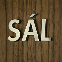 Hliníkový 3D nápis SÁL lepený na hnědé zdi se strukturou dřeva