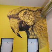 Žlutočerná fototapeta s motivem papouška nalepená na stěně, výřezy pro dveře a potrubí