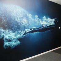 Modro-černo-bílá matná fototapeta s motivem potápěče a vody nalepená ne stěně chodby, skleněná příčka zasedací místnosti