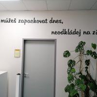 Rčení Co můžeš zapackovat dnes, neodkládej na zítra, vyřezané z černé plotrové folie, nalepené na bílé stěně, šedé dveře, zelená rostlina, informační tabulka s logem DHL